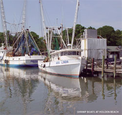Trawlers at dock in Holden Beach, North Carolina